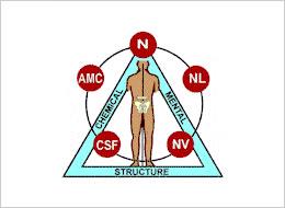 健康の三大要素